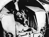 Laika dog on Sputnik-2 satellite (NYTimes photo)