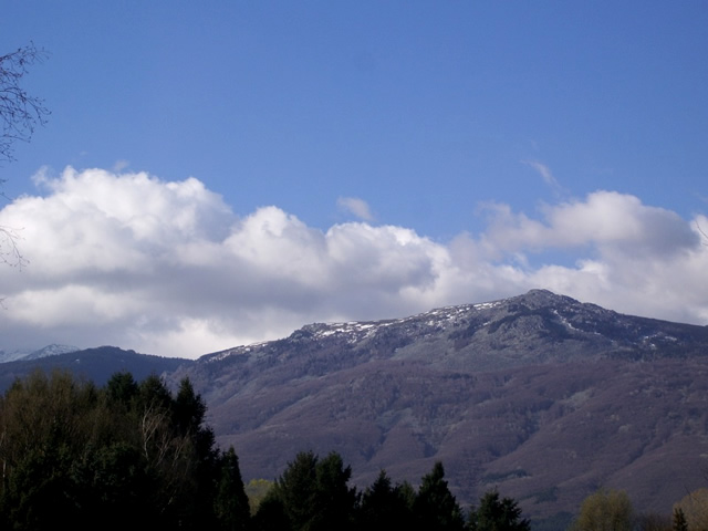 Vitosha mountain (2011)
